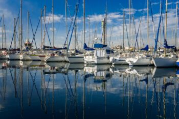 Positive Neuigkeiten von der Hamburger Yachthafen Gemeinschaft